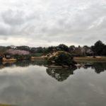 日本三大名園の一つ岡山県後楽園にお花見しに行ってきました