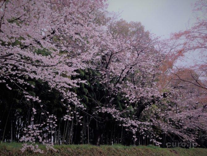 okayama-korakuen-14
