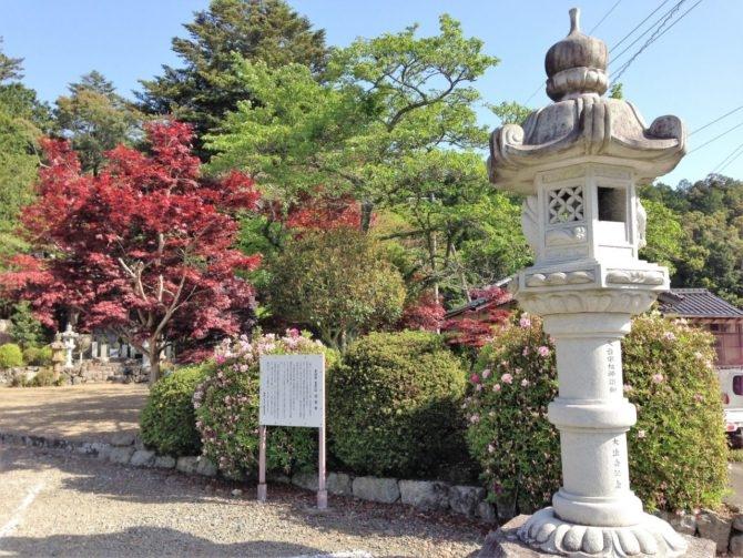byakugouji-kyusyaku-fuji-04