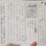 公文「ノラネコの研究」問題と甥っ子の回答