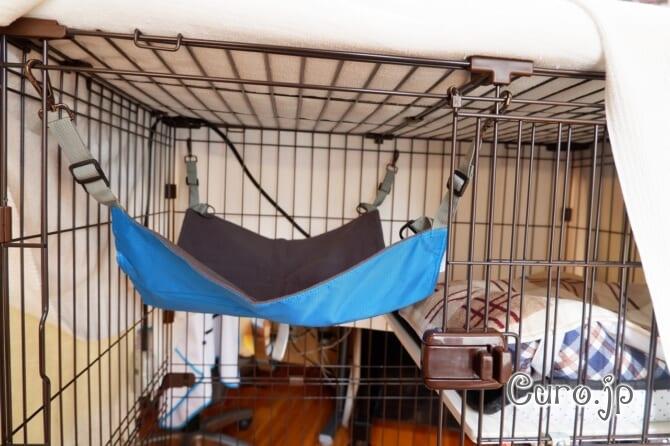 cat-hammock-4